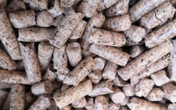 Substrat Pellets für Kräuterseitling