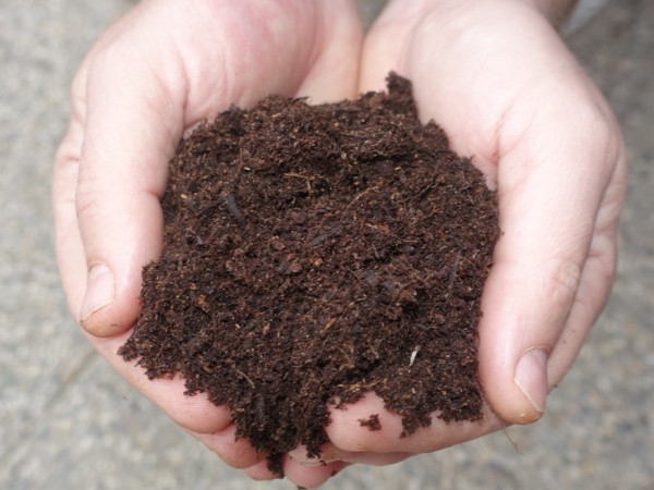 Mykorrhiza Profi Substrat