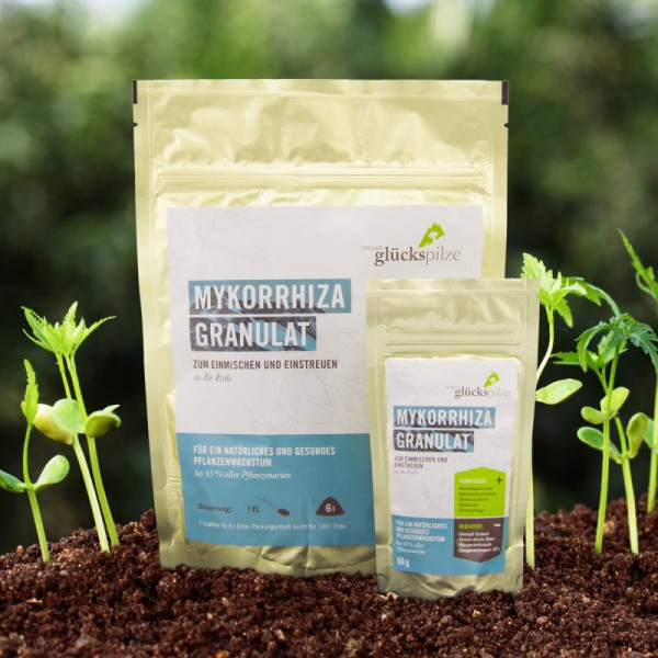Mykorrhiza Granulat
